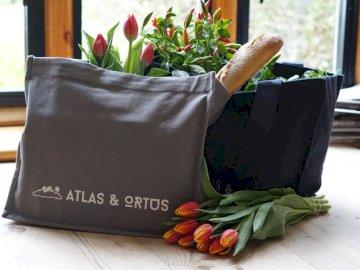 Unsere Taschen werden von Freeset hergestellt, - Tulpenblumen auf dem Tisch. Eine Blumenvase, die auf einem Tisch sitzt.