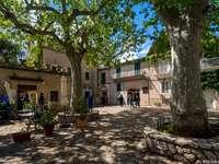 Valldemossa-Muzeum Chopina - Valldemossa-Muzeum Chopina. Drzewo przed budynkiem.