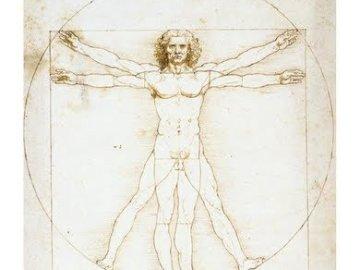 człowiek witruwiański - Ułóż układankę Człowiek witruwiański.
