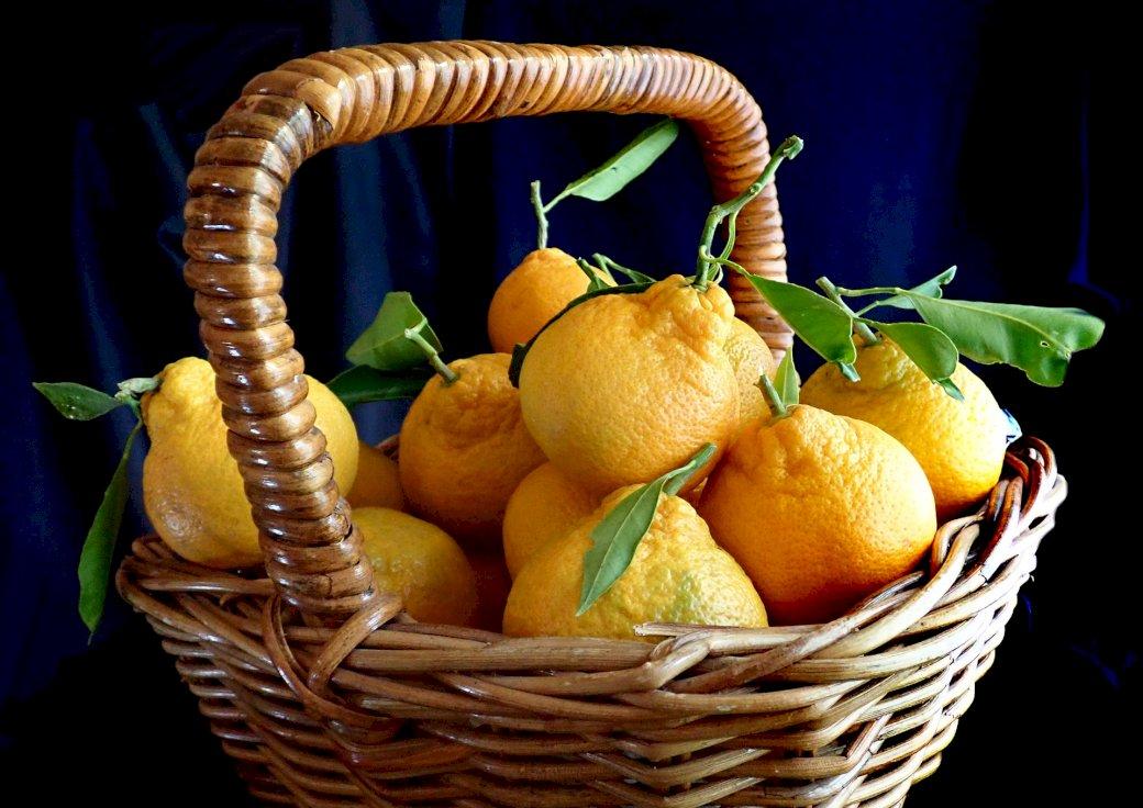 kosz owoców - mandarynki w koszyczku. Kosz wypełniony owocami.