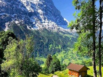 Una capanna in montagna. - Puzzle. Paesaggio: cabina in montagna. Un albero con una montagna sullo sfondo.
