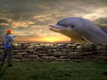Delfinowa bajka - Ilustracja do  ksiażki. Ptak latający na niebie.