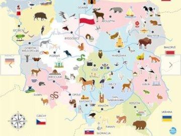 Mapa Polski - Mapa Polski z regionami, miastami, zwierzętami. Zbliżenie mapy.