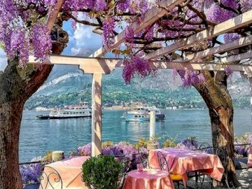 At Lake Como. - Europe. Italy. At Lake Como. A tree with pink flowers on a table.