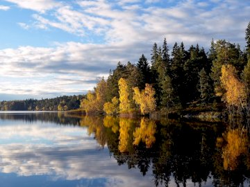 Stockholm - Lake Flaten ------------------. A body of water surrounded by trees.