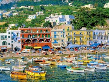 Construction on Capri. - Jigsaw puzzle. Construction on Capri. A harbor filled with boats.