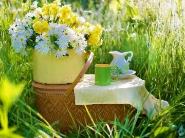 Bouquet Of Flowers In A Pot In The Basket - Flowers In A Pot On Basket In Grass. A vase of flowers sitting on top of a grass covered field.