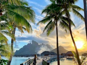 Sunset on Bora Bora - oh oh oh oh oh oh oh oh oh. A beach with a palm tree in front of a body of water.