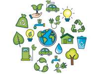 Ecology - Develop the following activity.