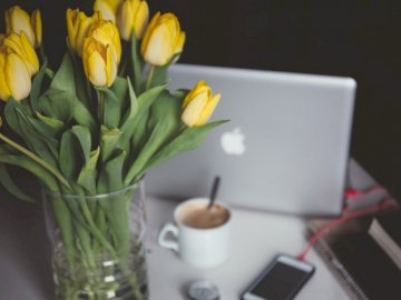 Besser fühlen - Gelbe Tulpen in Glasvase. Rumänien. Eine Vase gefüllt mit Blumen, die auf einem Tisch sitzen.