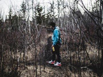 Randonneur parmi les branches nues - Homme en veste bleue et pantalon noir en bois. Edmonton, Alberta. Un homme monté sur une planche à