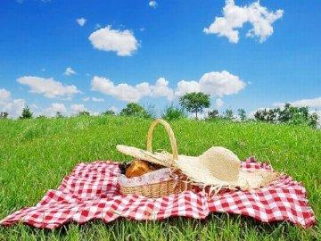 Es ist Zeit zum Picknick - Aufgabe für Sie - machen Sie Rätsel.