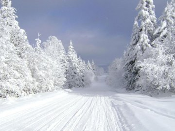 Winterlandschaft - Winterlandschaft im Schnee. Ein Mann fährt Ski einen schneebedeckten Hang hinunter.