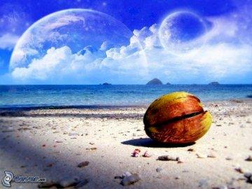Widoczek - Widoczek................. Jabłko siedzi na plaży.