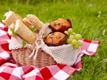 Piknik z rodziną klasa 1b - Ułóż puzzle, jeśli chcesz możesz wyłączyć podgląd. Powodzenia. Kawałek ciasta siedzi na sz