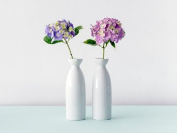 Two hydrangea vases - Purple and pink hydrangeas flowers. Leuven, Belgium. A vase filled with purple flowers.