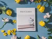 Boek van Spreuken, Bijbel met
