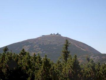 Schneeball - Der höchste Gipfel des Riesengebirges. Ein Baum mit einem Berg im Hintergrund.