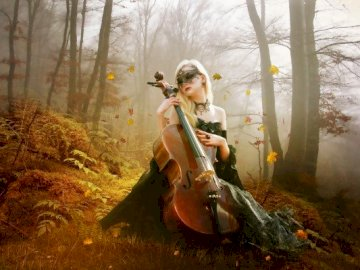 Woman With Cello In The Forest - Woman With Cello In The Forest. A person sitting in a tree.