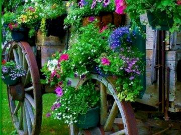 Ein Wagen mit bunten Blumen - Auto mit schönen bunten Blumen. Eine rosa Blume ist in einem Garten.