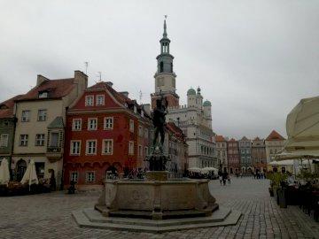stary rynek w Poznaniu - kamienice, ratusz na rynku w Poznaniu. Statua przed budynkiem.