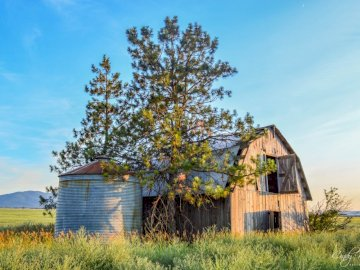 antiguo granero con silo - antiguo granero y silo en Hyw 41. Una casa con arbustos frente a un exuberante campo verde.