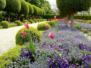 In a beautiful park. - Puzzle: in a beautifully maintained park. A large purple flower is in a garden.