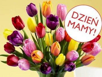 MUTTERTAG - Blumenstrauß für Mama arrangieren Sie den Blumenstrauß für Mamas Urlaub. Eine Nahaufnahme einer