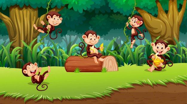 Πίθηκοι - el25 - Παζλ - μαϊμούδες. Εξωτικά ζώα (5×5)