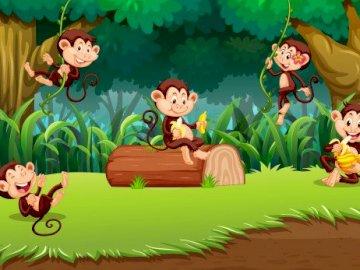 Małpy - el25 - Puzzle - małpy. Zwierzęta egzotyczne.