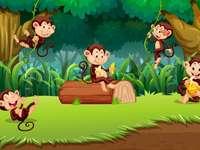 Πίθηκοι - el25