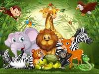 egzotikus állatok