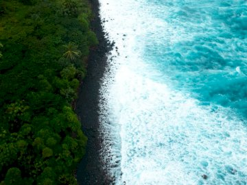 A view above the Big Island of - Aerial view of green forest beside body of water during daytime. Miami, FL