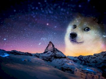 doge landscape - it's a doge in the middle of the night