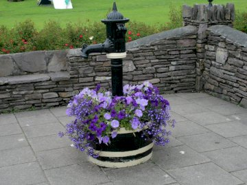 Ukwiecona studnia - Ukwiecona studnia z kamiennym murkiem. Wazon z kwiatami na ścianie z cegły.