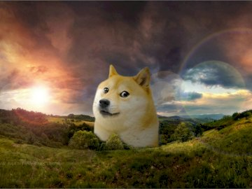 doge super difficult - it's the same landscape of doge only with more difficulty. A dog sitting on top of a grass cove