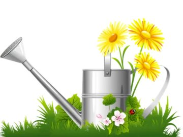 Watering can with flowers - Complete the puzzle with the puzzle. A vase of flowers on a table.