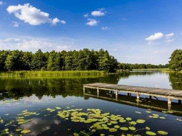 jezioro i pomost - spokojna przystań, idealne miejsce dla marzycieli. Most nad zbiornikiem wodnym otoczony drzewami.