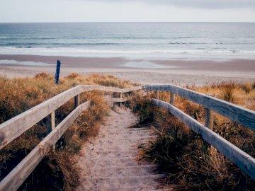 Camino a la playa - paisaje marino -------------. Un banco de madera sentado junto a un cuerpo de agua.