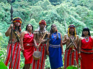 Indigenous Wayú - Indigenous communities of Colombia. A group of people standing on a lush green forest.