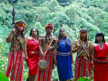 Indigène Wayú - Communautés autochtones de Colombie. Un groupe de personnes debout sur une forêt verte luxuriante.