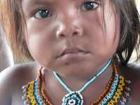 Barí indígena - Motilón indígena Barí. Uma menina posando para uma foto.