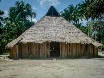 Indigenous Housing - Typical indigenous dwelling. A palm tree in front of a house.