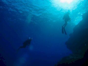 Разхождайки се във водата. - Мъж в черен мокър костюм под вода. Токио, Япония. Мъж, пл