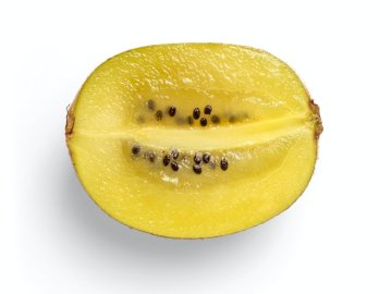 High-quality photo of kiwi on - Yellow lemon fruit with white background. A piece of fruit.