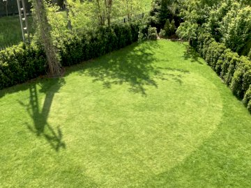 Corazón sobre hierba - Un hermoso corazón cortado en una hierba cortada con un cortacésped. A cerca de un exuberante camp