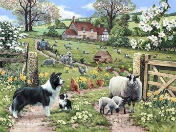 Wiejskie krajobrazy. - Układanka: wiejskie krajobrazy. Grupa owiec z psem w ogrodzie.