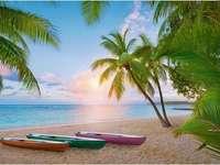 Paradicsom pálmafák alatt.