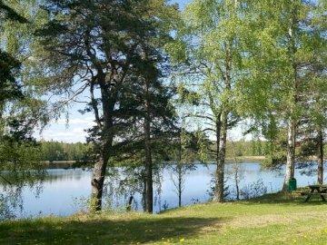 Polana nad jeziorem. - Zielonej trawy pole blisko jeziora podczas dnia. Szwecja