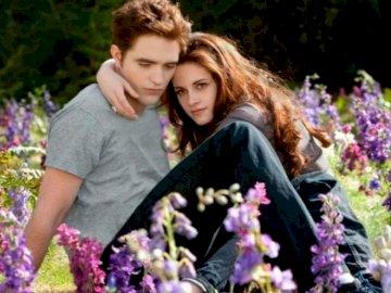 Bella i Edward na łące kwiatów - Układanka Belli i Edwarda na łące kwiatów